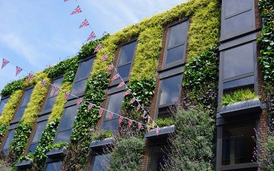 What are the advantages of a facade greening?