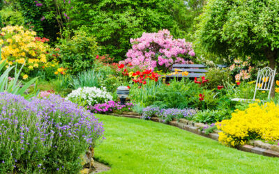 The best tips for beautiful flower beds! 🏵️